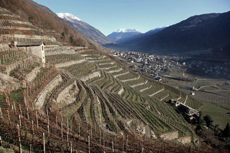 Elogio del Valtellina Doc sul Financial Times