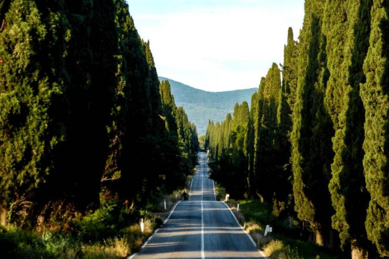 Stretto tra obblighi di sicurezza e desiderio di ripartire, l'enoturismo italiano da oggi ha uno strumento in più per gestire al meglio la difficile fase di rilancio.