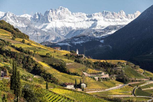 Il Consorzio di tutela mette in programma un viaggio lungo oltre 6.000 chilometri per presentare le nuove annate dei vini trentini agli operatori italiani.
