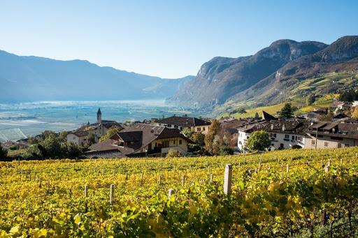 La sostenibilità alla base della programmazione del consorzio altoatesino, che punta deciso verso una viticoltura a basso impatto ambientale.