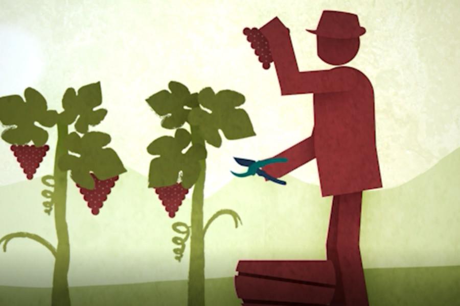 La Fivi promuove il suo logo