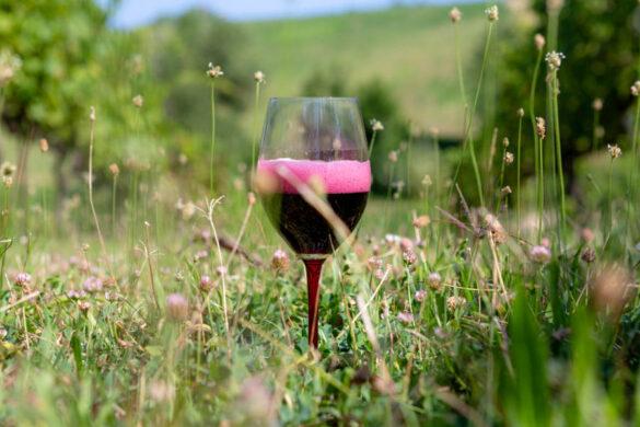 La filiera emiliana scommette su una gestione unitaria delle otto denominazioni che ruotano attorno al vitigno simbolo della regione.