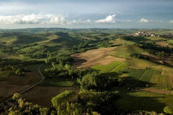 Nelle colline limitrofe a Castagnole Monferrato i produttori si preparano per una raccolta che si preannuncia di qualità.