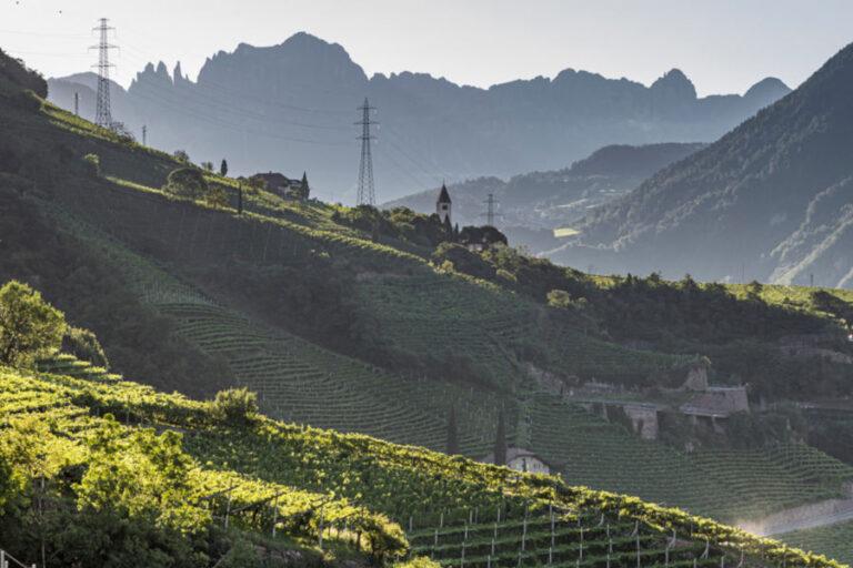 Una serie di video racconteranno da vicino i protagonisti del successo della viticoltura altoatesina e il loro imprescindibile legame con il territorio.