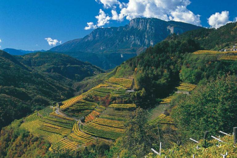 Le colline di Giulio Ferrari si aggiudicano il riconoscimento dedicato ai più importanti terroir mondiali.