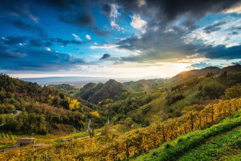 Passo avanti nel percorso di sostenibilità della Denominazione veneta, che spinge per un approccio sostenibile del suo distretto vitivinicolo.