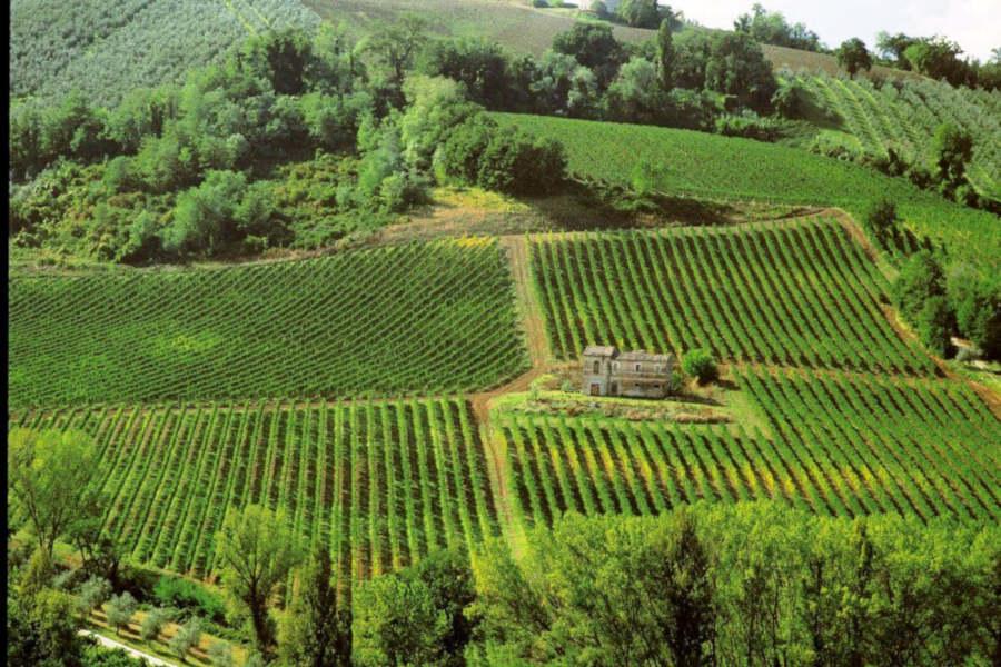 Al via nelle Marche un progetto da 15,7 milioni di euro su sostenibilità e competitività